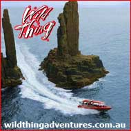 Wild Thing Adventures